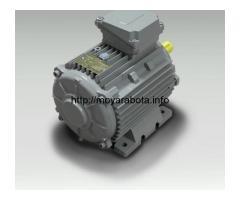 Электродвигатель в тропическом исполнении Indukta